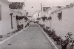 cantarranas02