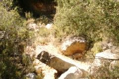 CaminoNoguera6