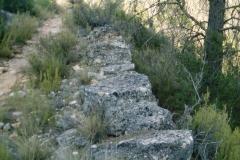 CaminoNoguera3