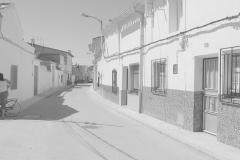 Callealarcon